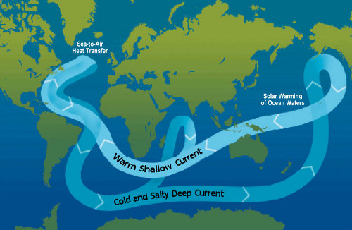 Map of the thermohaline circulation of the oceans